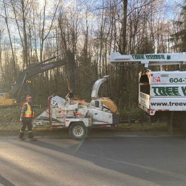 excavator and other tree removal vehicles